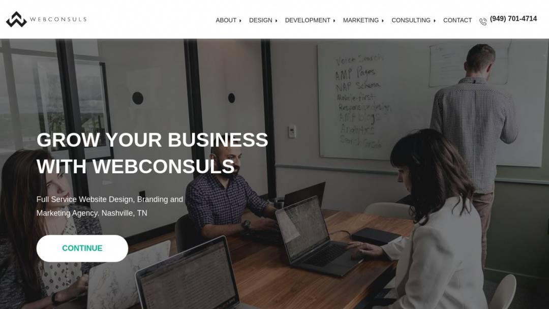 Screenshot of Webconsuls's Website
