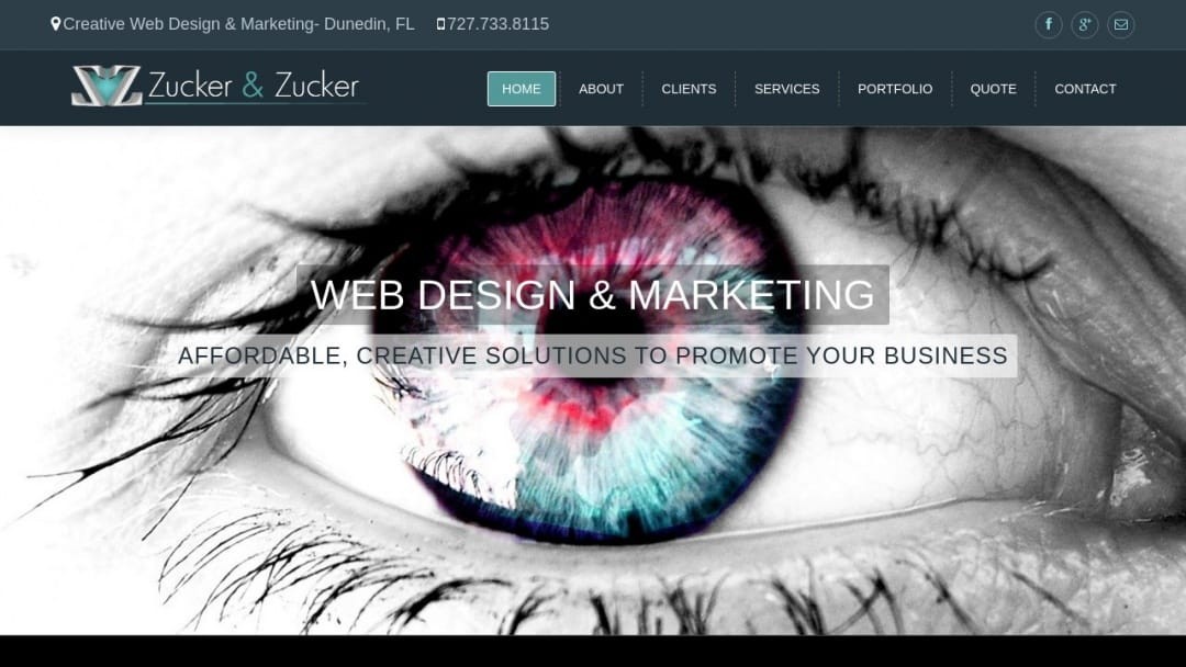 Screenshot of Zucker and Zucker's Website