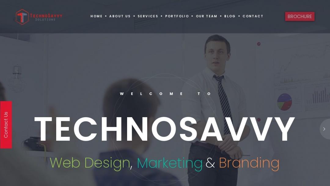 Screenshot of TechnoSavvy Solutions's Website