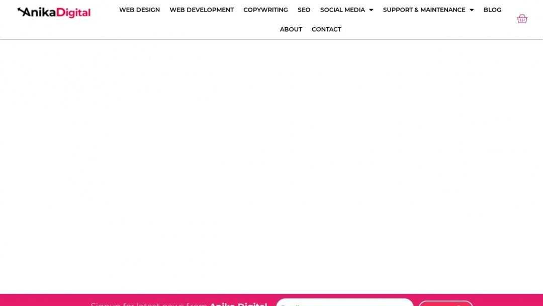 Screenshot of Anika Digital Media's Website