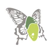 Cocoonfxmedia Ltd - Award Winning Agency in Lichfield