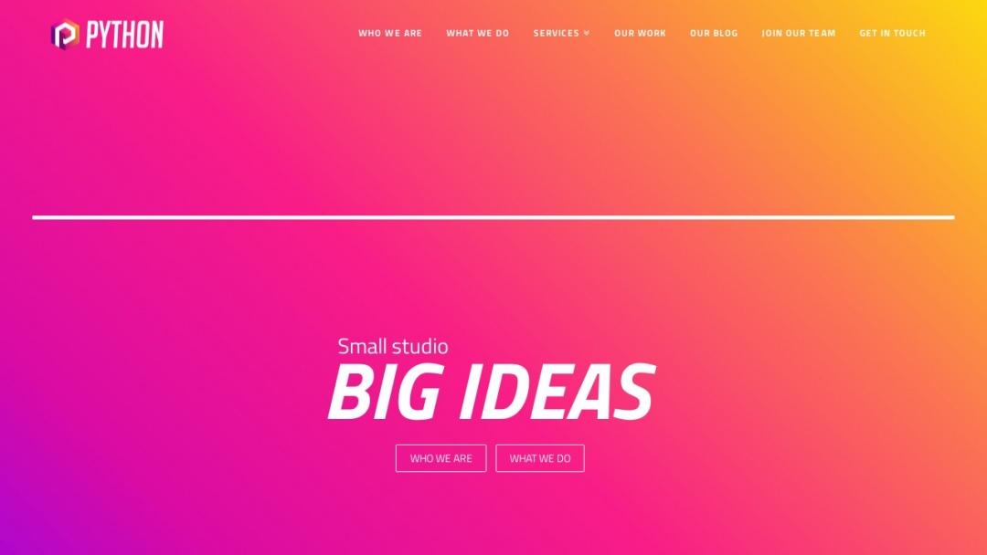Screenshot of Python Digital Agency's Website