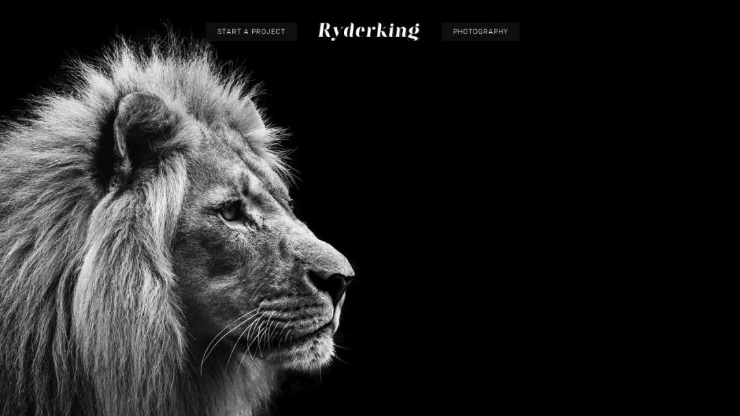 Screenshot of Ryderking Creative's Website