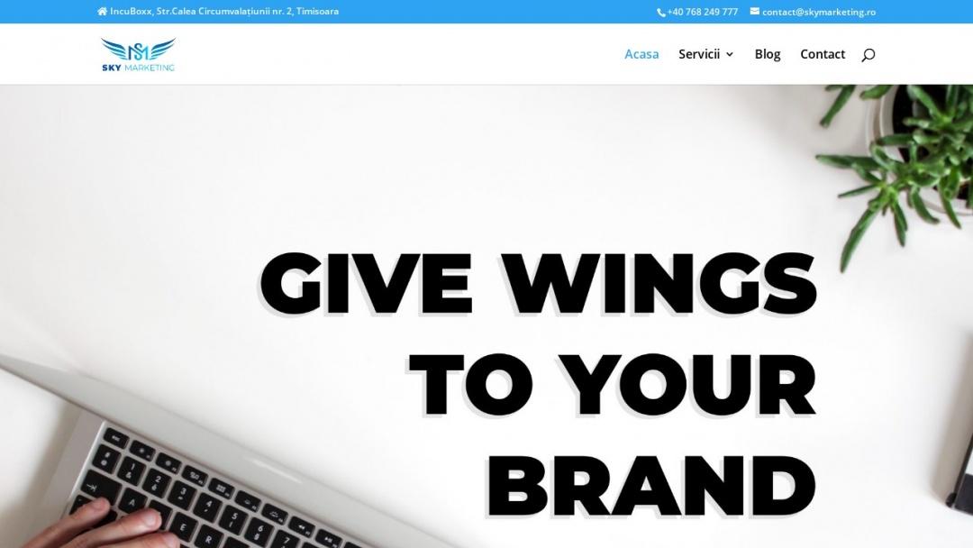 Screenshot of SkyMarketing's Website