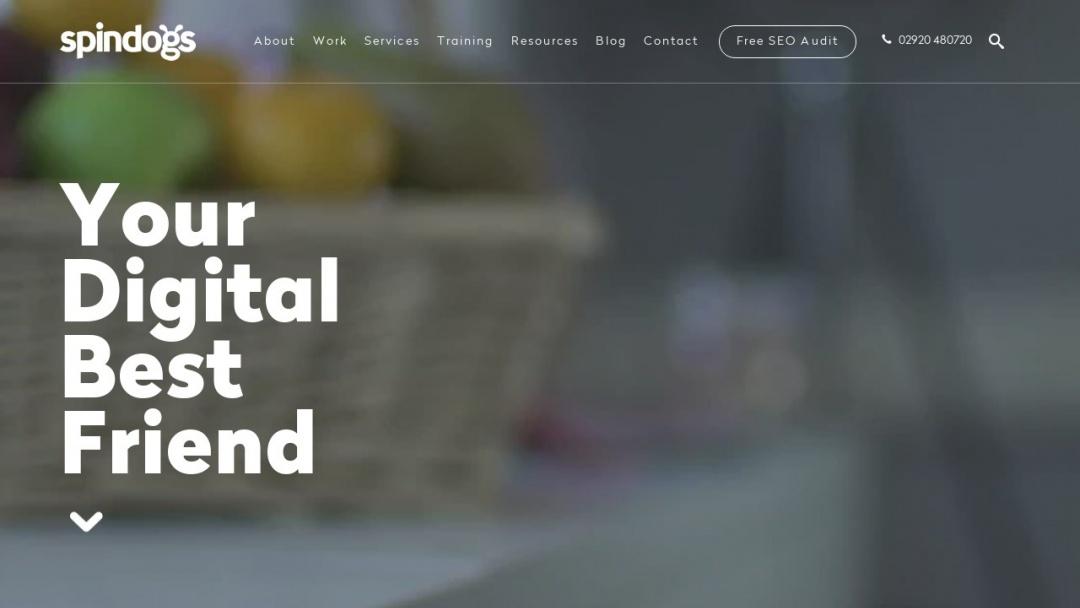 Screenshot of Spindogs's Website