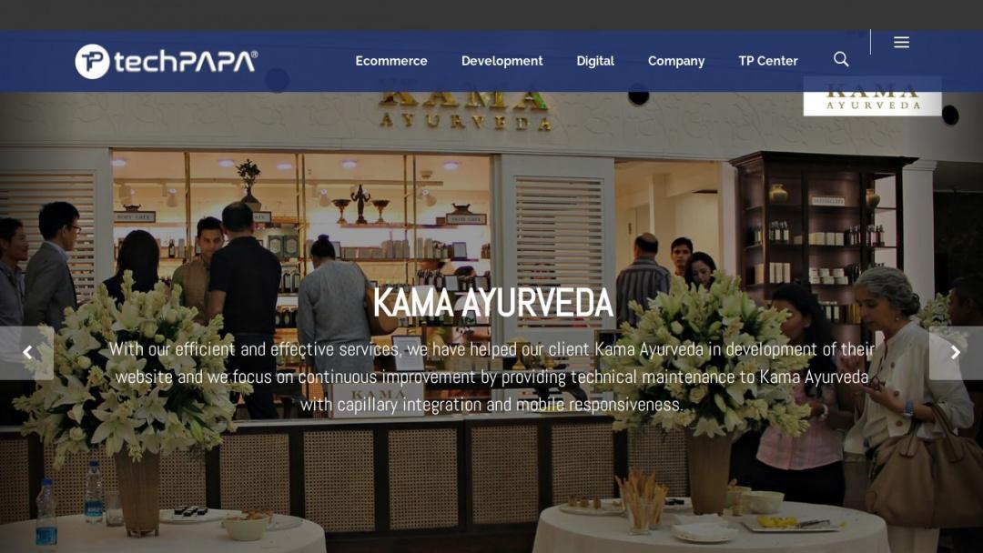 Screenshot of Techpapa Technology's Website