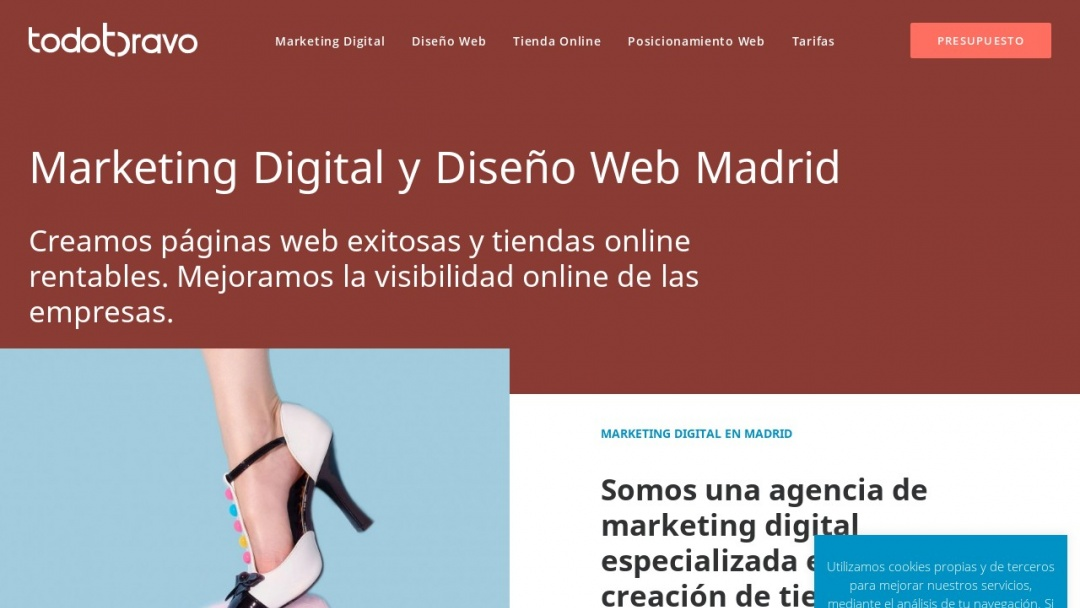 Screenshot of TodoBravo's Website