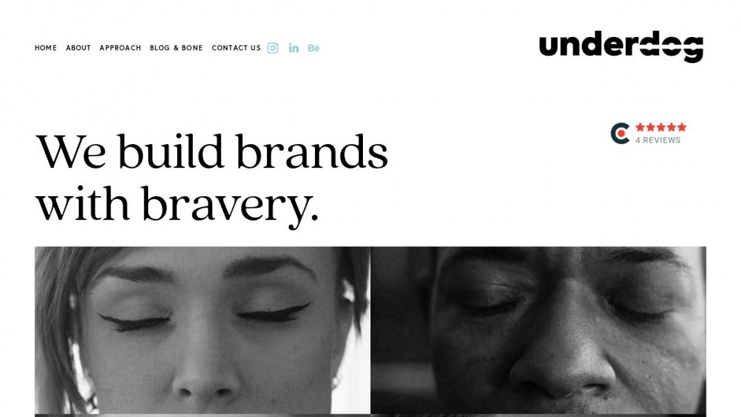 Screenshot of Underdog's Website