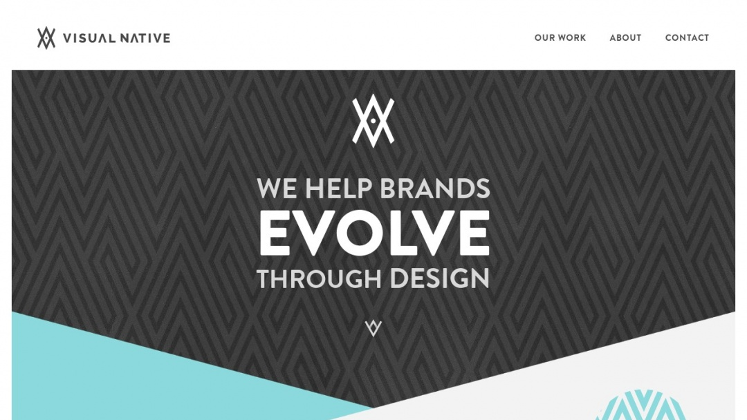 Screenshot of Visual Native's Website