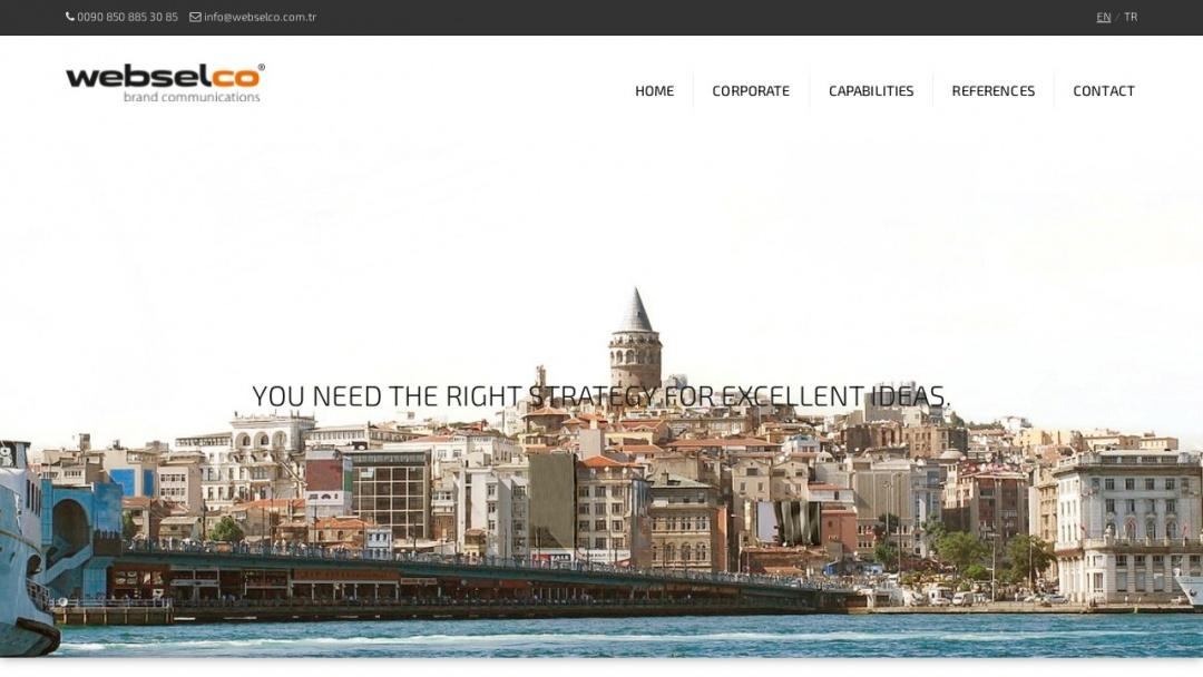 Screenshot of Webselco's Website