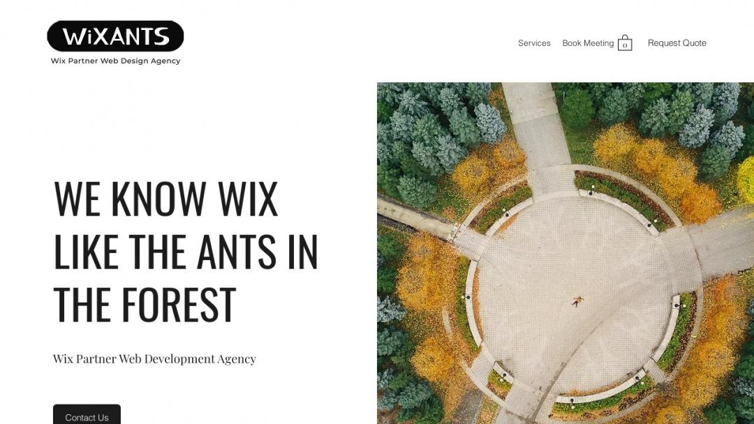 Screenshot of WixAnts's Website