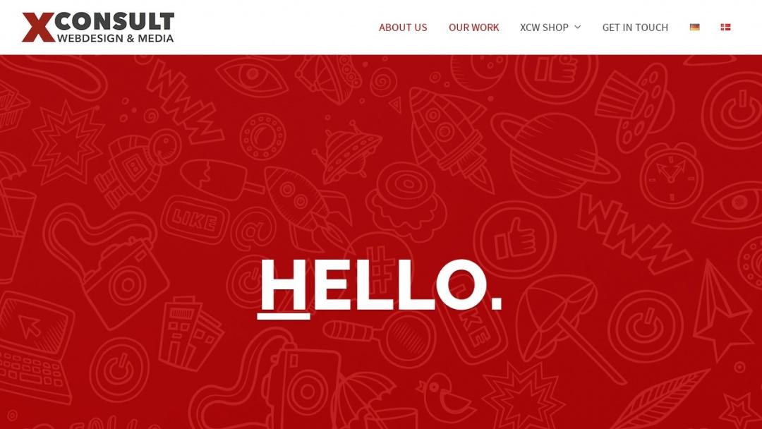Screenshot of Xconsult's Website