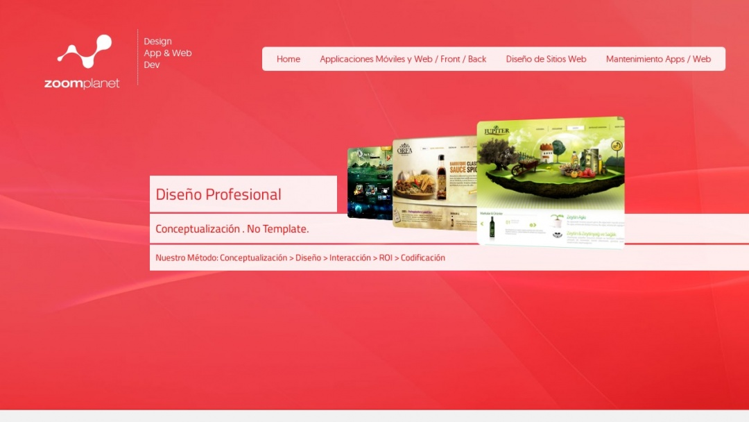 Screenshot of Zoomplanet Solutions's Website