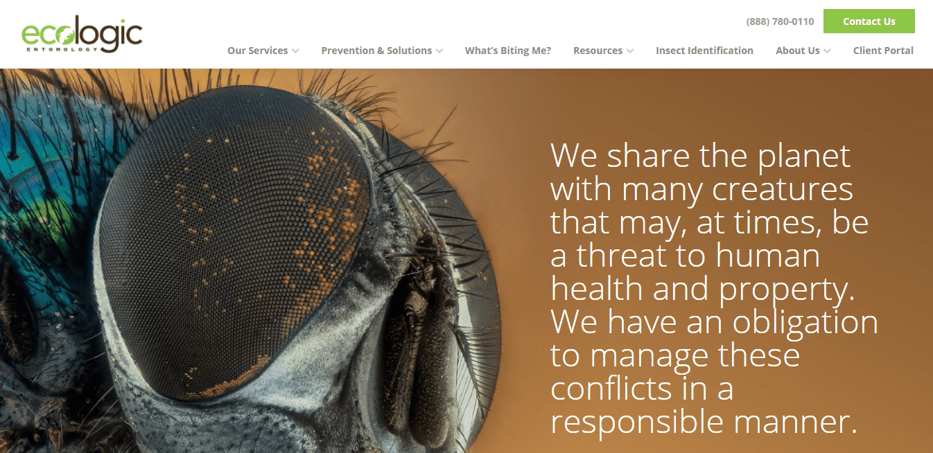 Best Pest Control Website for Ecologic Entomology LLC