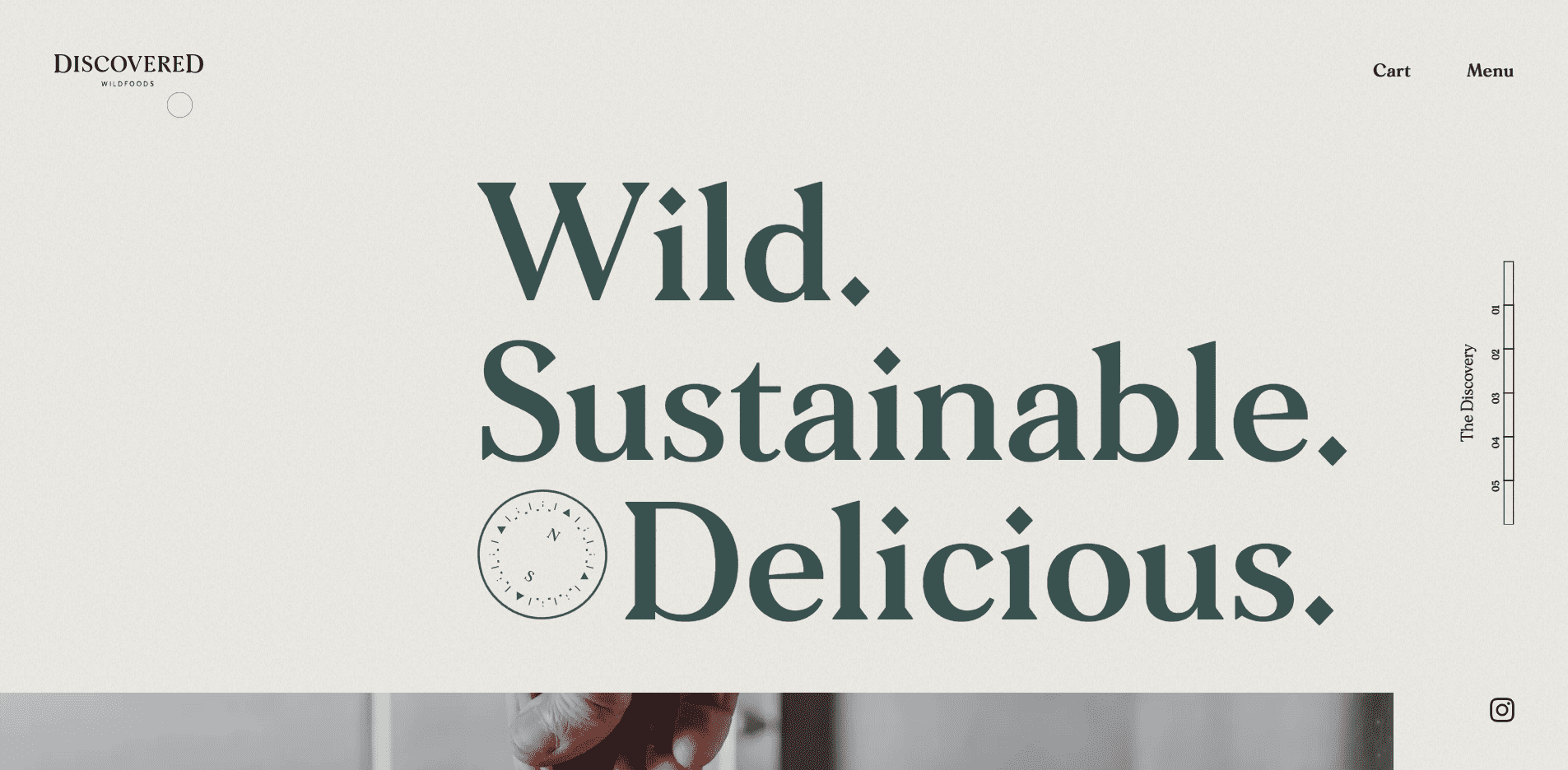 Best Agency Website for Discovered Wildfoods