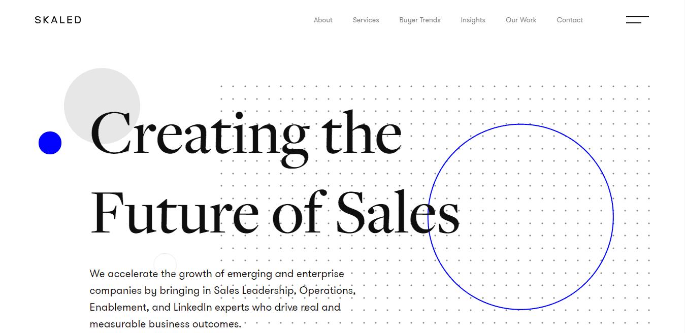 Best Enterprise Business Website for Skaled