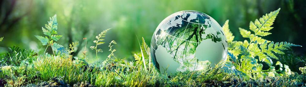 Digital Excellence   Future of Web Design   Green Hosting