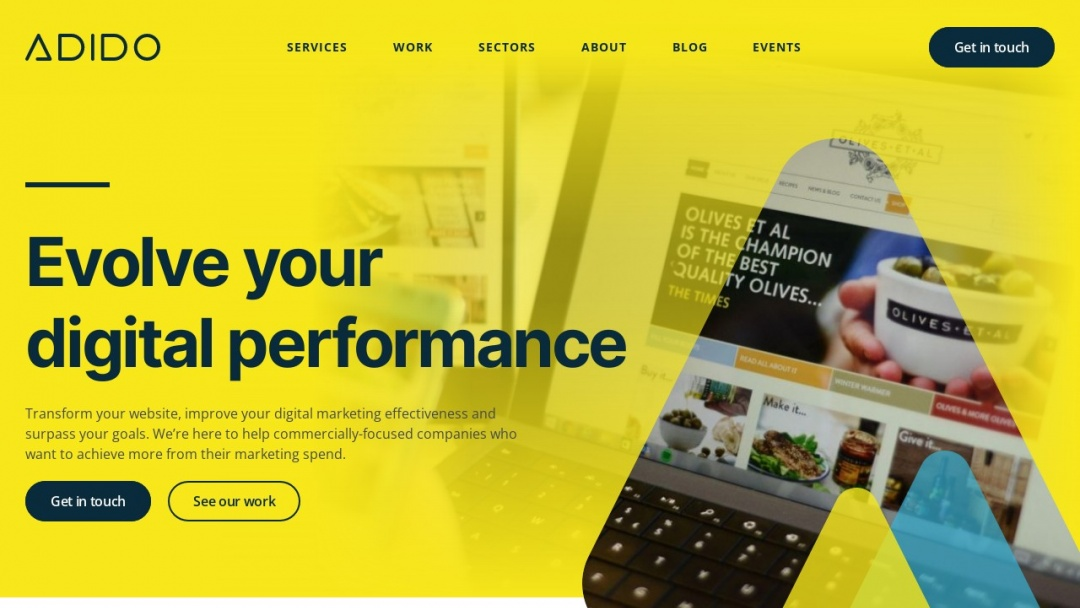 Screenshot of Adido's Website