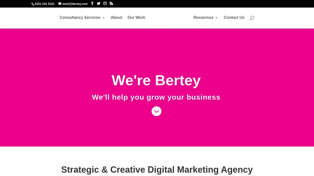 Screenshot of Bertey's Website