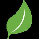LeadMD - Award Winning Agency in Scottsdale