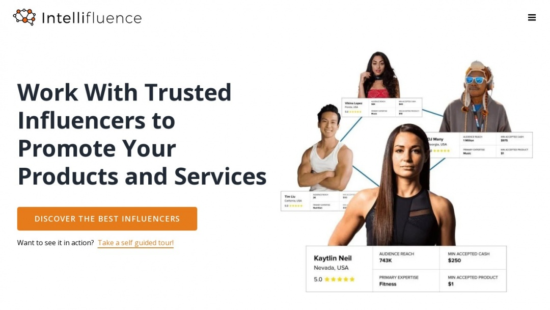 Screenshot of Intellifluence's Website