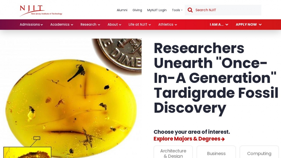 Screenshot of New Jersey Institute of Technology's Website
