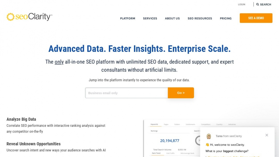 Screenshot of SeoClarity's Website