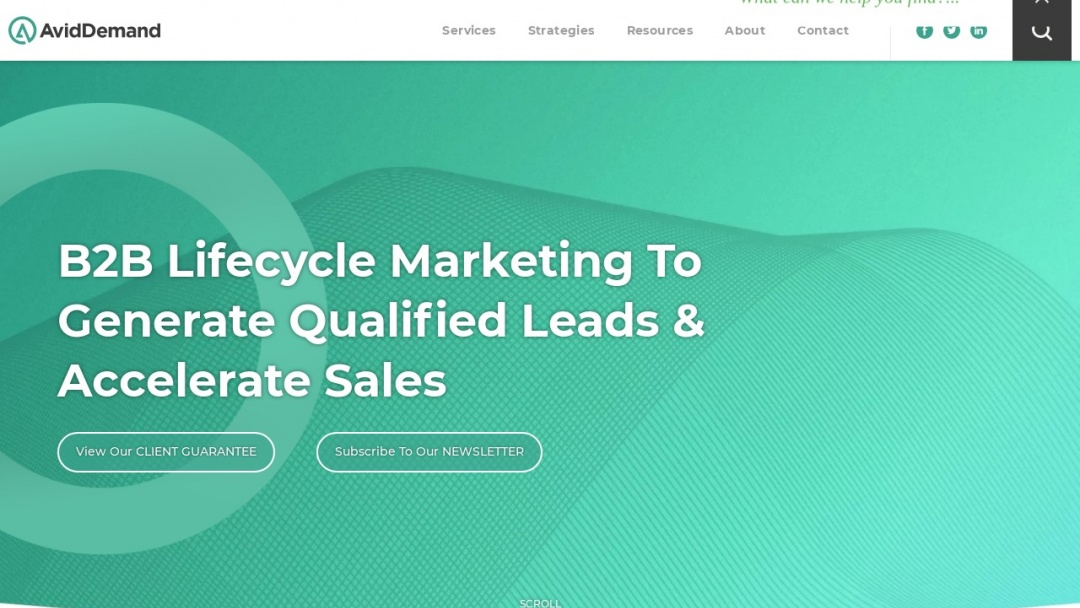 Screenshot of SmartSearch Marketing's Website