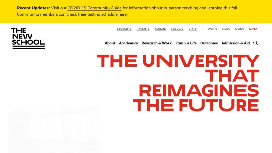 Screenshot of The New School's Website