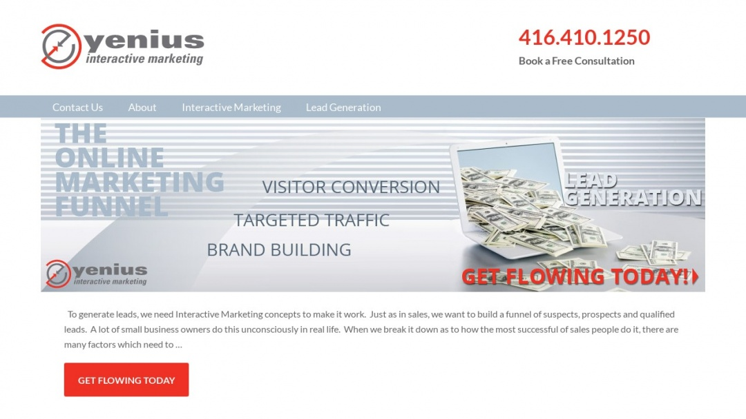Screenshot of Yenius Interactive Marketing's Website